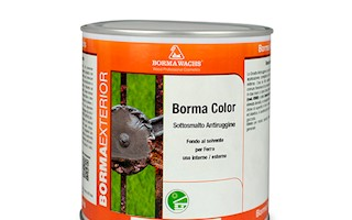 BORMA ANTIRUGGINE 0.125 ML